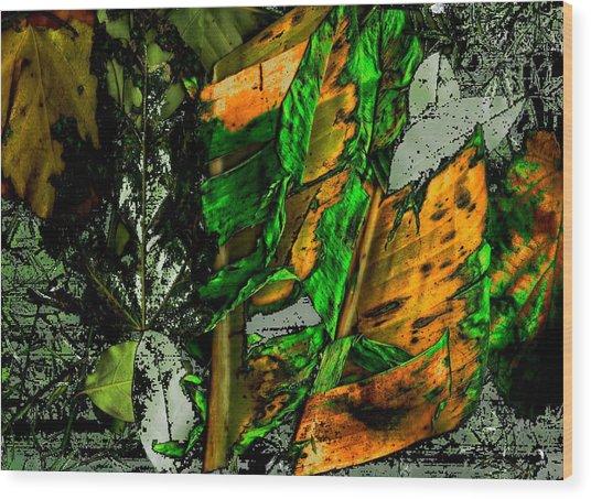 Buenos Aires 5 Wood Print by Horacio Carrena