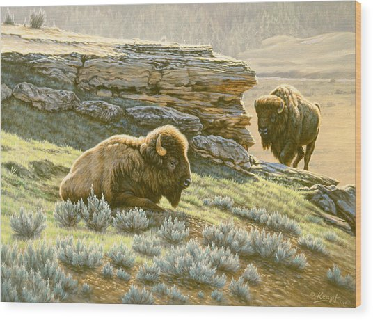 'buffalo At Soda Butte' Wood Print