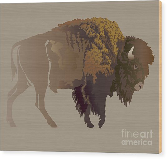 Buffalo. Hand-drawn Illustration Wood Print by Imagewriter