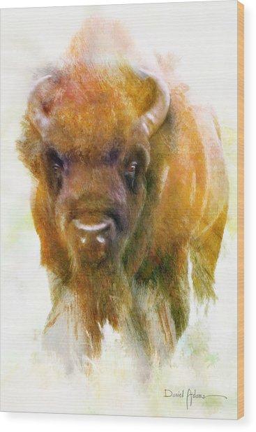 Da176 Buffalo II Daniel Adams Wood Print