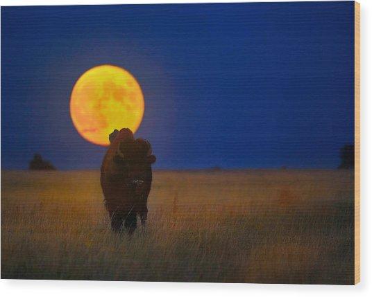 Buffalo Moon Wood Print