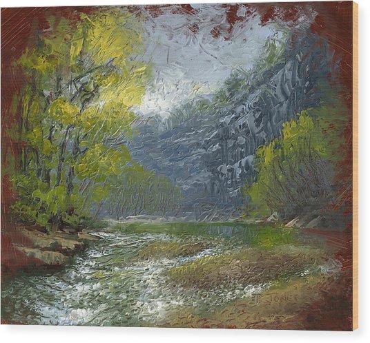 Buffalo River Bluff Wood Print by Timothy Jones