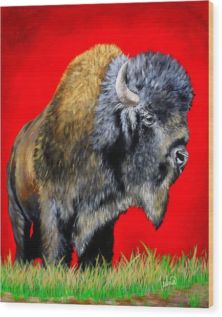 Buffalo Warrior Wood Print