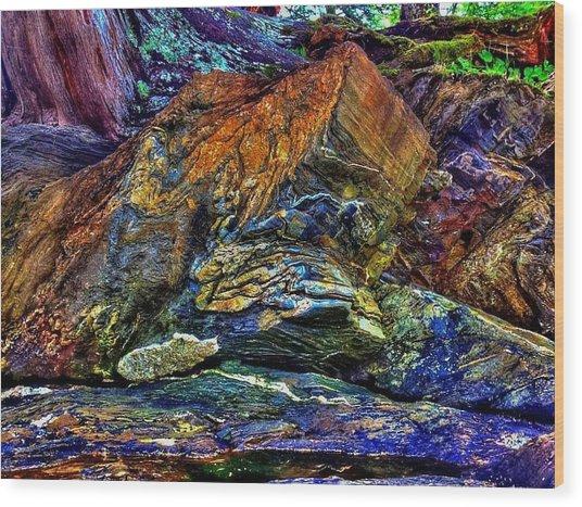 Buggy Rock Wood Print