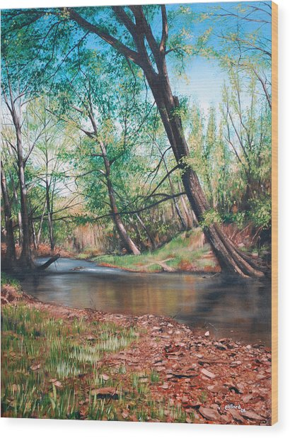 Bull Creek Wood Print