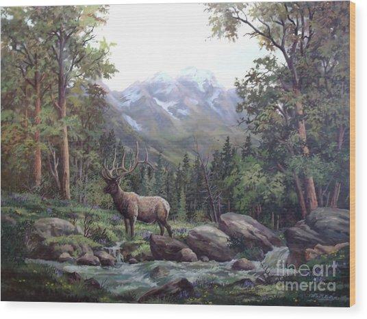 Bull Meadow Wood Print by W  Scott Fenton
