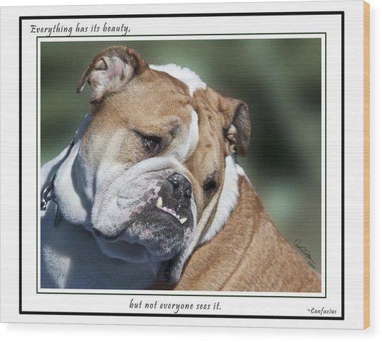 Bulldog Beauty Wood Print