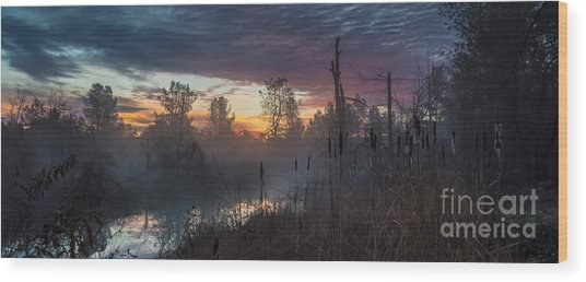 Bulrush Sunrise Full Scene Wood Print