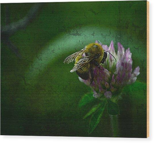 Bumble Bee Tattered Wings Art 2 Wood Print