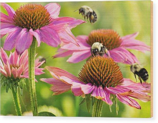 Bumbling Bees Wood Print
