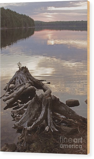 Burnt Island Lake Sunset Wood Print by Chris Hill