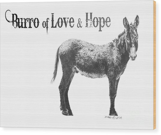 Burro Of Love And Hope Wood Print