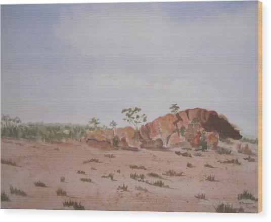 Bush Land Australia Wood Print