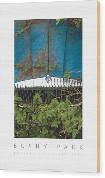 Bushy Park Beautifully Distressed Poster Wood Print
