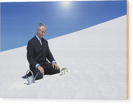 Businessman With A Watering Can Watching A Plant Planted In The Sand In A Desert Wood Print by John Cumming