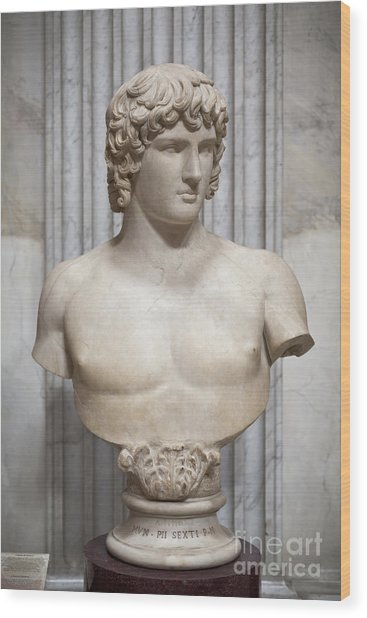 Bust Of Antinous Wood Print by Roberto Morgenthaler