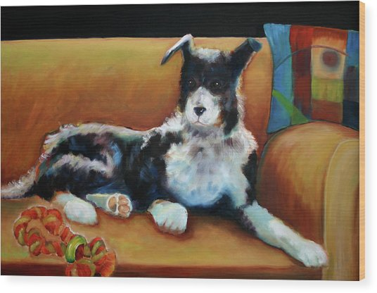Buster The Border Collie Wood Print