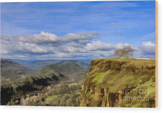 Butte Creek Canyon Overlook Wood Print