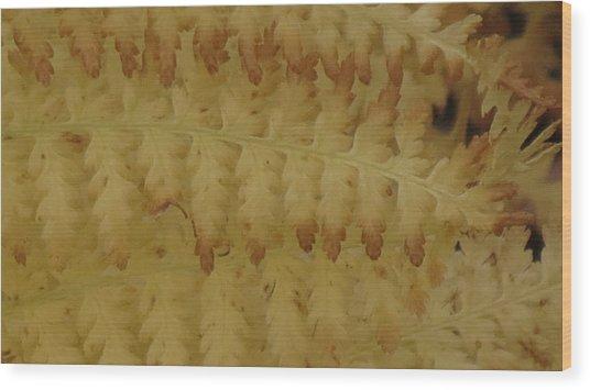 Butter Ferns Wood Print
