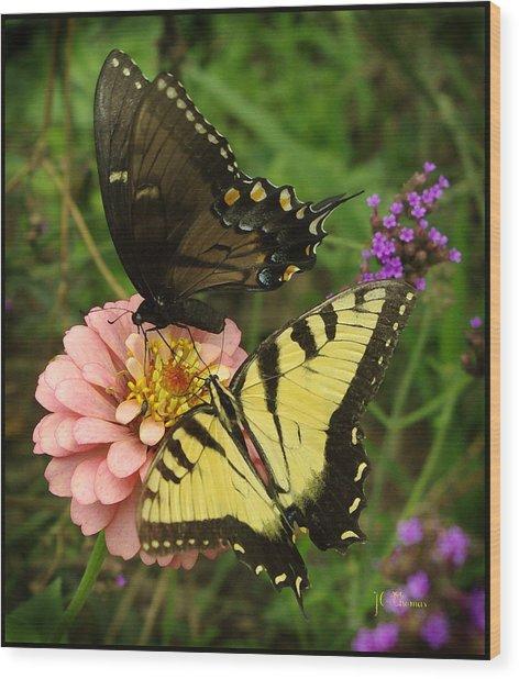 Swallowtaill Bliss Wood Print