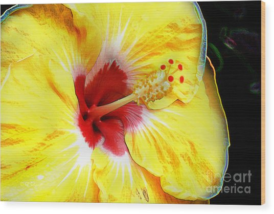 Butterfly Garden 07 - Hibiscus Wood Print