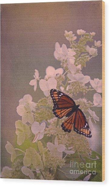 Butterfly Glow Wood Print