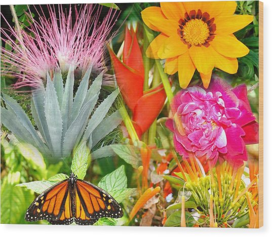 Butterfly In The Flowers Wood Print by Van Ness