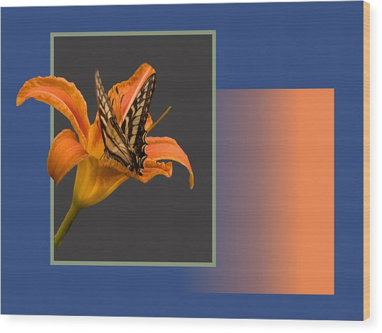 Butterfly On Day Lily Wood Print