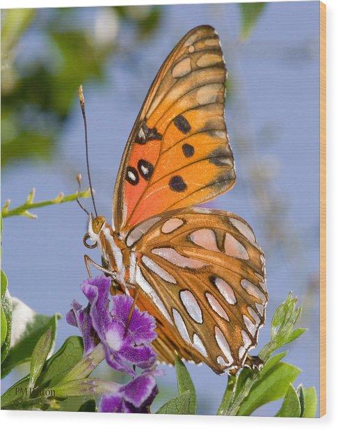 Butterfly Wood Print by Paulette Moran Dalton