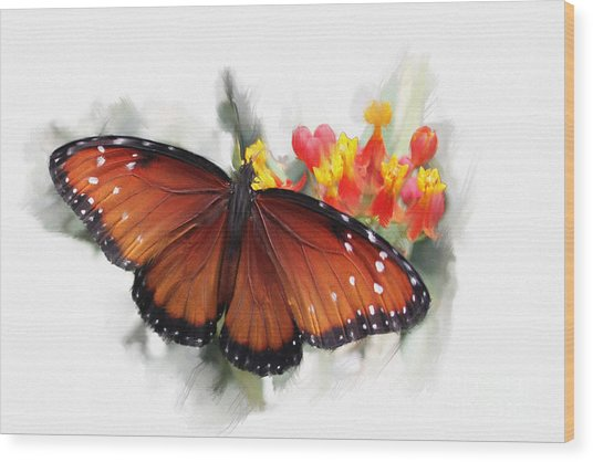Butterfly Wood Print by Roger Lighterness