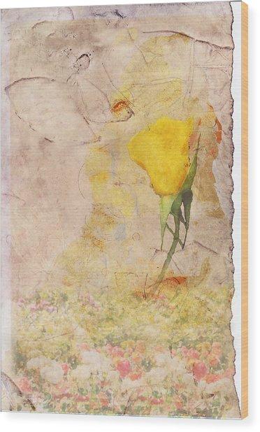 Butterfly Woman Wood Print by Juli Cromer