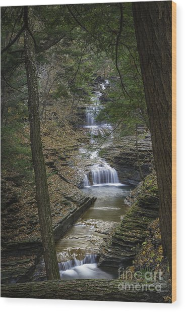 Buttermilk Falls In Autumn IIi Wood Print