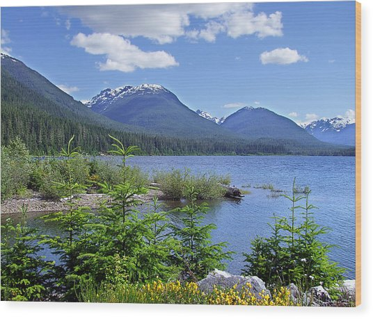 Buttle Lake Wood Print