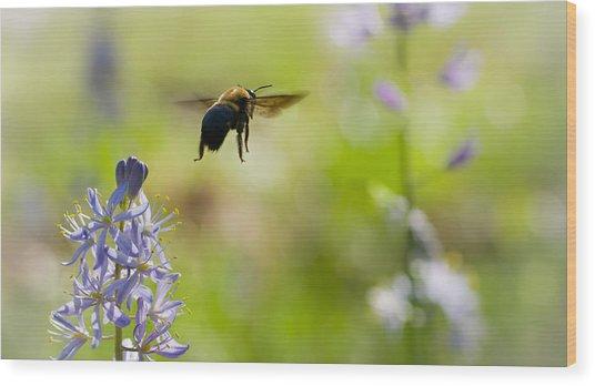 Buzz Off Wood Print