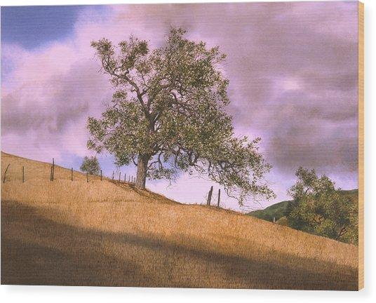 By The Big Oak Wood Print