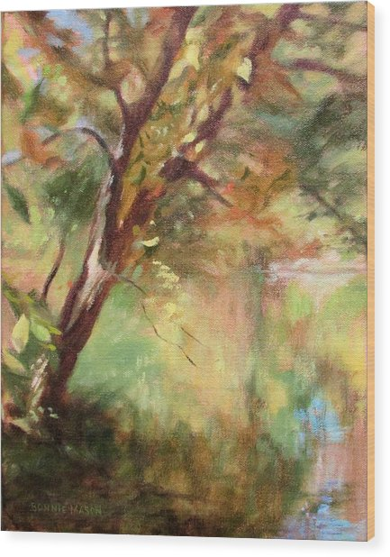 By The Greenway In Autumn- Along The Roanoke River Wood Print