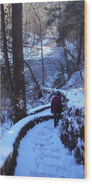 By The River 2 Wood Print by Cynthia Harvey