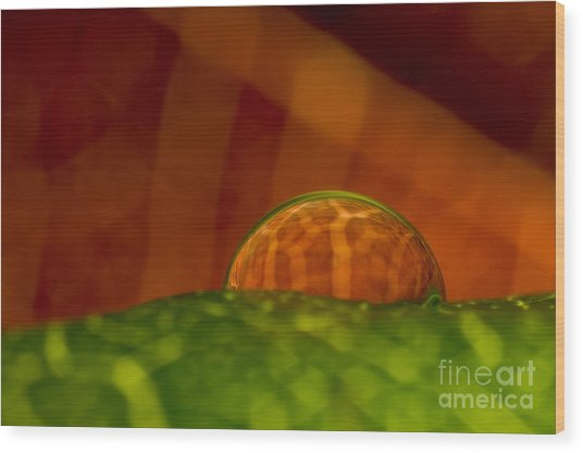 C Ribet Orbscape In The Belly Of Fury Wood Print