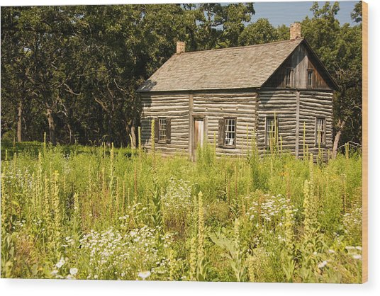 Cabin In The Prairie Wood Print
