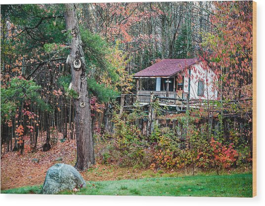 Wood Print featuring the photograph Cabin In The Woods by Rosemary Legge