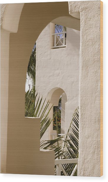 Wood Print featuring the photograph Cabo San Lucas by Sherri Meyer