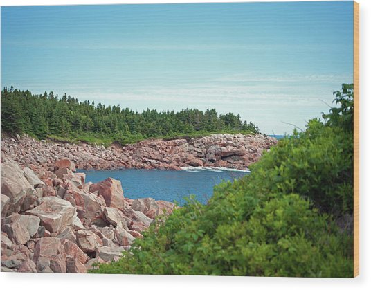 Cabot Trail Coastline Wood Print by Andalib