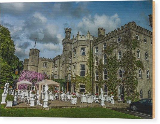 Cabra Castle - Ireland Wood Print