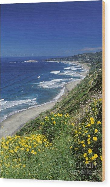 Cachagua Coastline Chile Wood Print