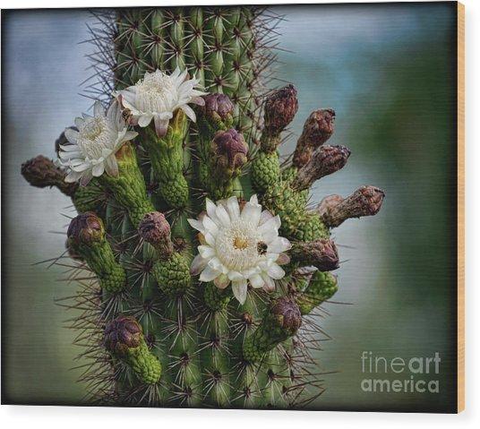 Cacti Bouquet  Wood Print