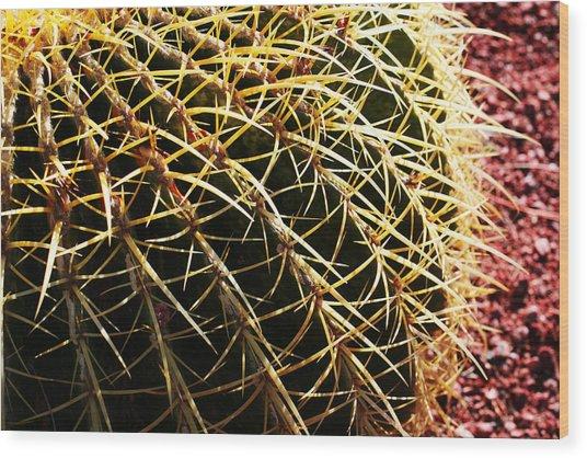 Cactus 10 Wood Print