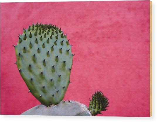 Cactus And Pink Wall Wood Print