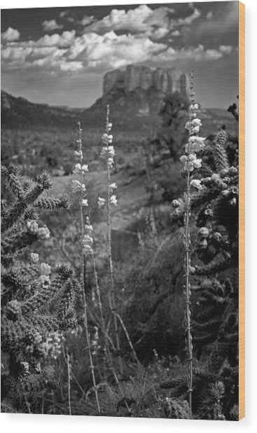 Cactus Flowers And Courthouse Bluff Bw Wood Print