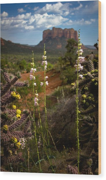 Cactus Flowers And Courthouse Bluff Wood Print