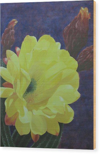 Cactus Morning Wood Print by Janis Mock-Jones